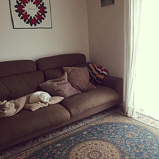 家族暮らし4LDK、ウィルトン織に関するhaamamaさんの実例写真