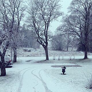 女性24歳の一人暮らし、cold winter morningに関するwillanderssonさんの実例写真