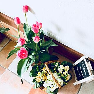 玄関/入り口/ウエルカムボード/チューリップ咲きました♡/フォロワーの皆様に感謝♪/2018.2.21...などのインテリア実例 - 2018-02-21 14:50:27