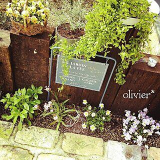 、春の寄せ植えに関するolivierさんの実例写真