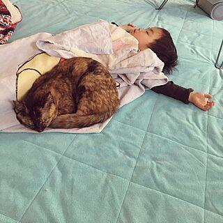 女性40歳の家族暮らし3LDK、ミリン₍˄·͈༝·͈˄₎ฅ˒˒に関するkeiko-sawakaさんの実例写真