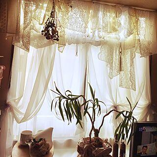 部屋全体/ドライフラワー/サンキャッチャー/オーガンジーリボン/幸せの木...などのインテリア実例 - 2017-04-07 15:18:32