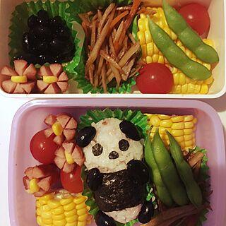 キッチン/もののけ姫/お弁当/3歳娘/上野動物園/パンダ...などのインテリア実例 - 2017-07-05 08:38:36
