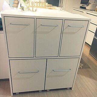 キッチン/ゴミ箱のインテリア実例 - 2017-01-18 12:13:51