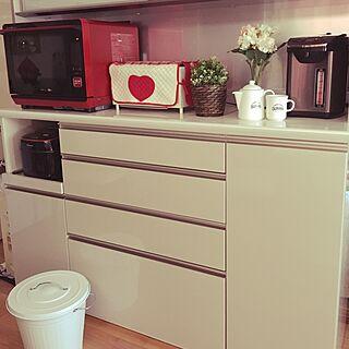 キッチン/IKEAのフェイクグリーン/ニトリの食器/パモウナ 食器棚/キッチンボード...などのインテリア実例 - 2017-05-27 17:18:00