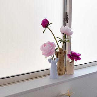 好きなのに囲まれて暮らす/芍薬/いつもいいねありがとうございます♡/切り花/花のある暮らし...などのインテリア実例 - 2020-05-15 19:06:51