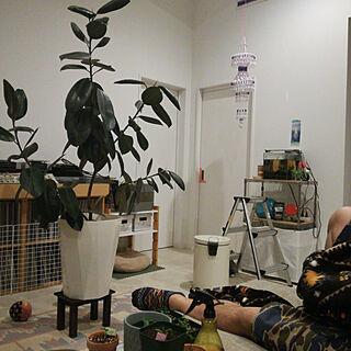 女性39歳の家族暮らし3LDK、ハンキングに関するmoopeeさんの実例写真