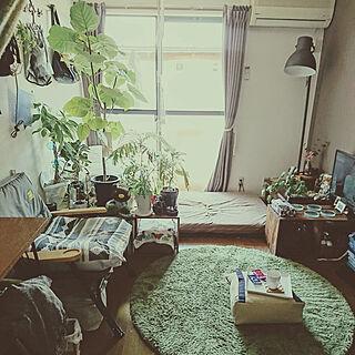 部屋全体/くつろぎ空間/賃貸/IKEA/1R...などのインテリア実例 - 2018-04-21 12:16:02