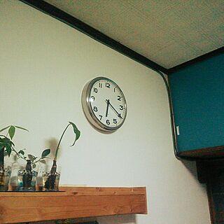 棚/雑貨/北欧/観葉植物/ダイソー...などのインテリア実例 - 2014-07-30 18:31:49