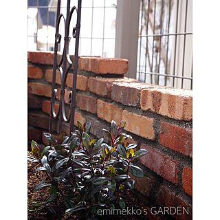玄関/入り口/レンガの壁/ガーデン雑貨/DIY/ガーデン...などのインテリア実例 - 2016-03-22 17:57:04
