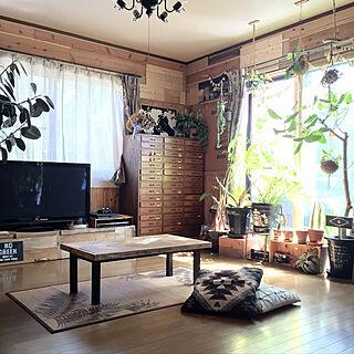 リメ鉢の人気の写真(RoomNo.3013646)