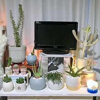 机/好きな物に囲まれて暮らしたい♡/植物のある暮らし/観葉植物/多肉植物...などのインテリア実例 - 2018-08-09 18:55:53