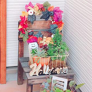 、100均植物に関するusachinさんの実例写真
