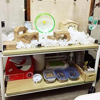 女性35歳の一人暮らし2K、ケージに関するshameimaruさんの実例写真
