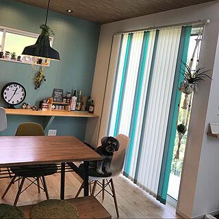女性33歳の家族暮らし4LDK、キッチンの天井に関するelsa.homeさんの実例写真
