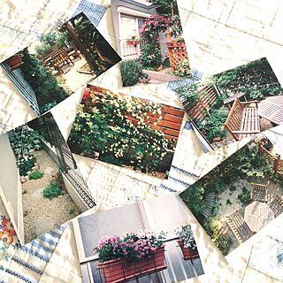 部屋全体/昔の写真/ガーデンのインテリア実例 - 2013-07-22 06:17:41