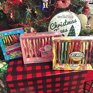 クリスマスツリー/クリスマス/Candy canes/christmas2019/アメリカ生活...などのインテリア実例 - 2019-12-09 03:53:17