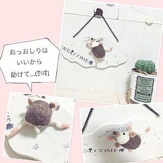 ハリネズミの人気の写真(RoomNo.2127663)