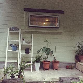 毎日素敵なお宅と巡り合うの人気の写真(RoomNo.2979600)