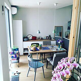 女性の、2LDK、家族住まいの「キッチン」についてのインテリア実例