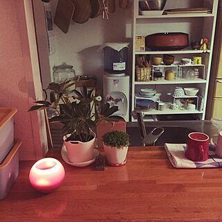 キッチン/つるす収納/キャンドル/配線収納/配線隠し...などのインテリア実例 - 2016-04-26 00:08:54