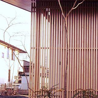 玄関/入り口/庭/植物/格子/ナツハゼ...などのインテリア実例 - 2014-08-18 13:22:30