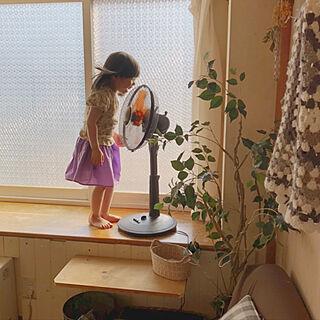 扇風機/山善/DIY/子供と暮らす/リビングのインテリア実例 - 2020-07-03 17:47:56