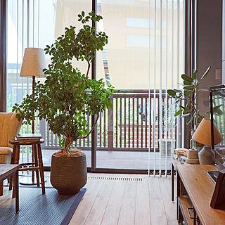 リビング/LIXILスタイルシェード/無垢の床/観葉植物のある暮らし/CRASH GATE...などのインテリア実例 - 2018-07-11 08:45:17