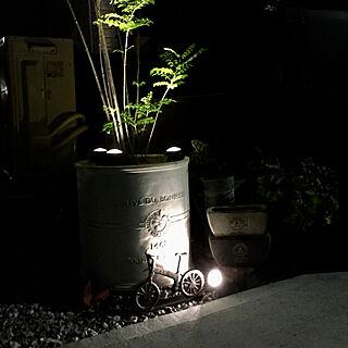 玄関/入り口/自転車オブジェ/シマトネリコの鉢植え/TM9芝生/いぬのいる暮らし...などのインテリア実例 - 2017-09-18 21:07:59