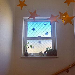 壁/天井/しかも絡まってる。/星のガーランド、ラメのりが足りず途中放棄/階段の窓/ディスプレイ...などのインテリア実例 - 2017-11-24 21:25:13