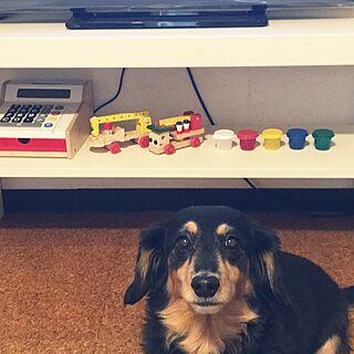 女性45歳の家族暮らし3DK、IKEAの玩具に関するohanaさんの実例写真
