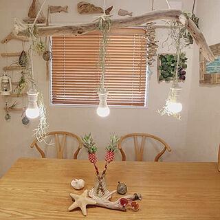男性家族暮らし、流木に関する____kensさんの実例写真