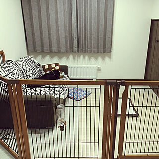 リビング/犬部屋/いぬのいる暮らし/いぬ専用/大型犬...などのインテリア実例 - 2018-07-23 00:00:14