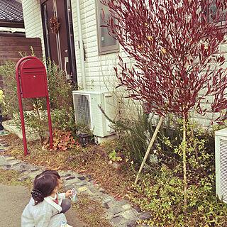 古釜レンガの人気の写真(RoomNo.3201788)