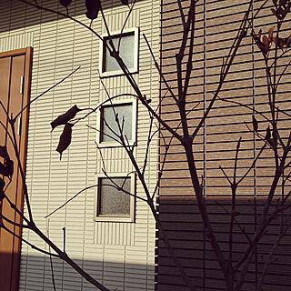 女性家族暮らし4LDK、外壁タイルに関するki-さんの実例写真