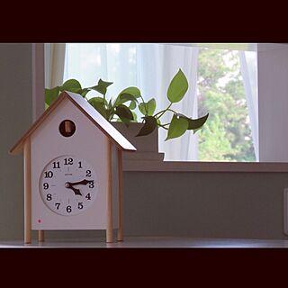 棚/淡いグリーンの壁紙/カインズホーム/観葉植物/鳩時計のインテリア実例 - 2016-05-04 17:07:36