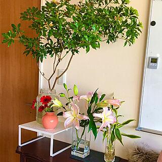 2020.2.28/今週のお花/室内植物/花のある暮らし/植物のある暮らし...などのインテリア実例 - 2020-02-28 09:15:24