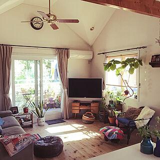 女性家族暮らし3LDK、観葉植物 キリムに関するjunさんの実例写真