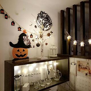 Kitchenの人気の写真(RoomNo.3019443)