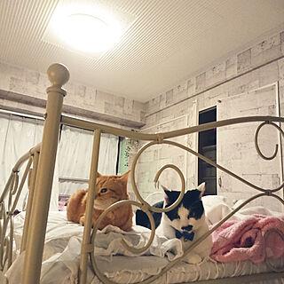 一人暮らし1K、築30年に関するasuminさんの実例写真