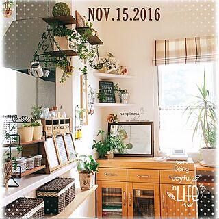 棚/♡ ありがとうございますm(_ _)m/DIY/カフェ風/セリア...などのインテリア実例 - 2016-11-15 12:31:16