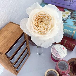 女性33歳の一人暮らし1K、花瓶⁇に関するYukarinさんの実例写真