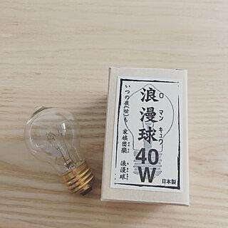 壁/天井/一人暮らし/1LDK/記録/後藤照明...などのインテリア実例 - 2018-04-18 15:01:05