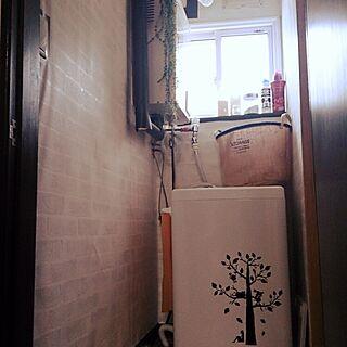 女性の、1LDK、一人暮らしの「バス/トイレ」についてのインテリア実例
