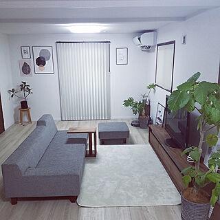 部屋全体/ウンベラータ/マスターウォール/植物のある暮らし/観葉植物...などのインテリア実例 - 2020-01-12 07:56:55