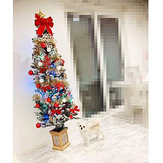 クリスマス/ホワイトインテリア/リビングのインテリア実例 - 2019-12-16 21:20:18