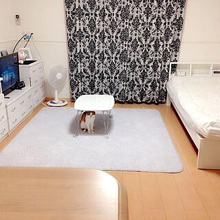 一人暮らしの部屋の人気の写真(RoomNo.2353195)