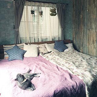 ベッド周り/しまむら/壁紙/サンゲツ壁紙/猫...などのインテリア実例 - 2017-09-16 07:48:27