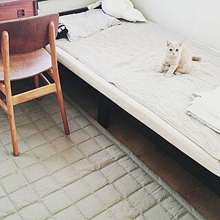 女性家族暮らし、家具に関するnanamomo1119さんの実例写真