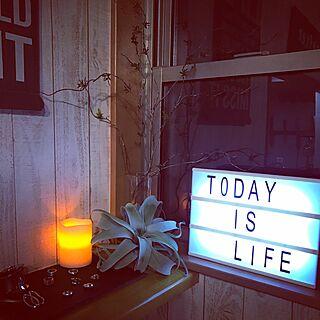 棚/ライトボックス/いなざうるす屋/キセログラフィカ/シルバーアクセサリー...などのインテリア実例 - 2017-02-12 21:20:27